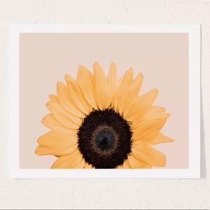 8x10 Sunflower Print (Urban Outfitters)
